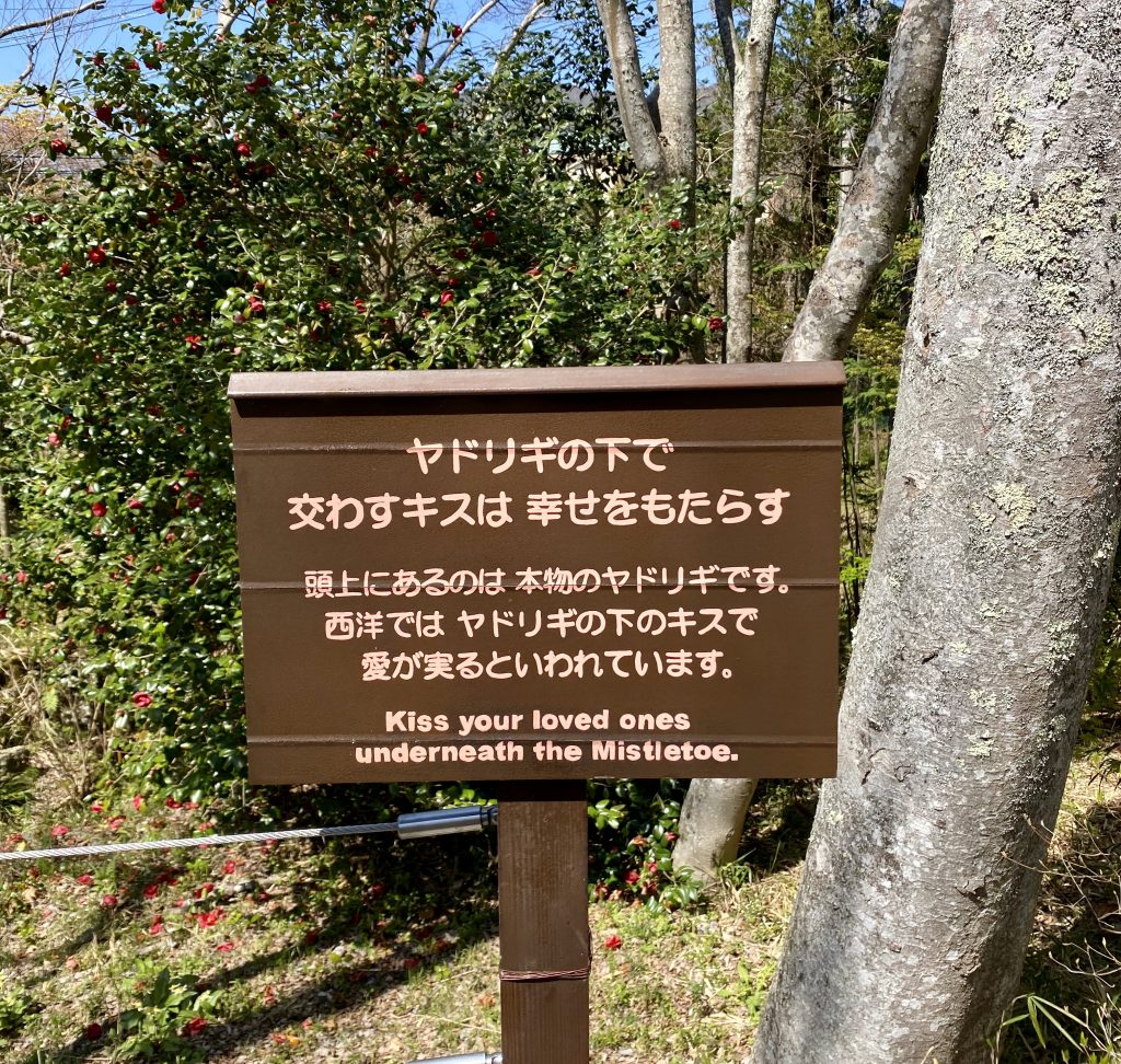 Hakone Day Trip Guide